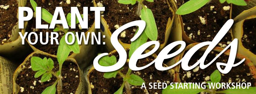 PYO Seed Starting