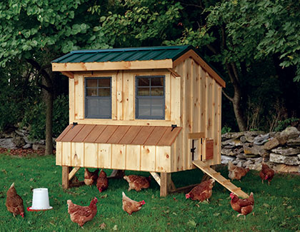 Chicken Coops & Dog Houses from Garden Time Sheds in Saratoga, Queensbury & Clifton Park NY & Rutland VT