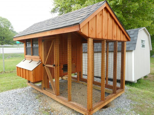 06' X 10' Chicken coop