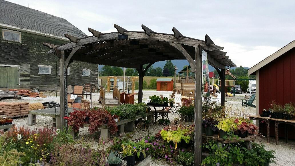 12 39 x 17 39 pt pergola at garden time nursery and garden center in rutland. Black Bedroom Furniture Sets. Home Design Ideas